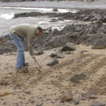 Widows: LInes in the Sand - Hartland Point, England